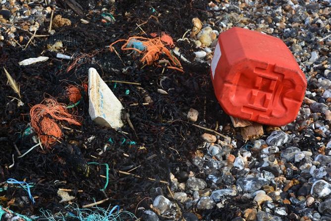 marine litter crisis 2